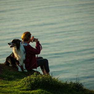 Find Dog Friendly Beaches Wales