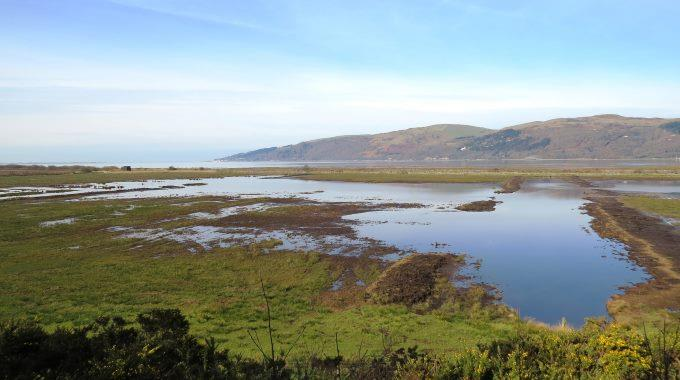 RSPB Ynys Hir - View from Ynys Feurig Hide